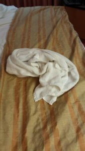 When we got back to the cabin, someone had folded our towel into an animal shape. I had to use it before I thought about taking the picture though.